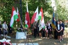 Uroczyste obchody 150. rocznicy bitwy pod Panasówką 07.09.2013