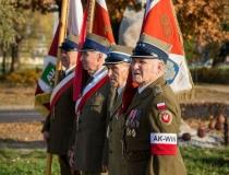 III Zamojski Marsz Niepodległości - Święto Niepodległości Zamość , fot. P. Błażewicz, M. Derkacz, 11.11.2014